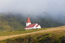 Church, Vik, Iceland by Danita Delimont