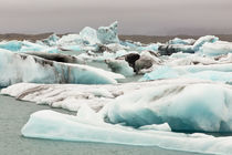 Iceberg formations broken off from the Breidamerkurjokull gl... by Danita Delimont