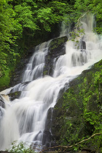 Torc Waterfalls, Killarney National Park, County Kerry, Repu... by Danita Delimont