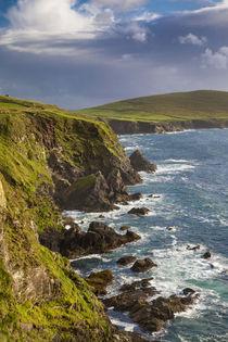 Rocky coastline of the Dingle Peninsula near Dunquin, County... by Danita Delimont