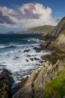 Slea Head with Blasket Islands beyond, Dingle Peninsula, Rep... by Danita Delimont