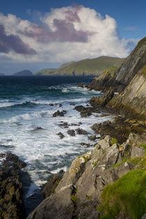 Slea Head with Blasket Islands beyond, Dingle Peninsula, Rep... by Danita Delimont
