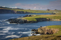 Evening sunlight over Ballyferriter Bay, Sybil Point and the... by Danita Delimont