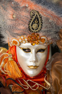 Venice at Carnival Time by Danita Delimont