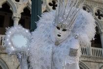 Venice at Carnival Time by Danita Delimont