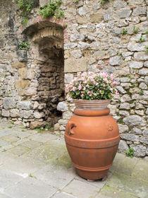 Europe, Italy, Tuscany, Montefollonico von Danita Delimont