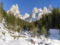 The Tschamin Valley in winter, Dolomites, Italy by Danita Delimont