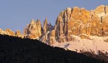 Rosengarten or Catinaccio range in the dolomites, Italy von Danita Delimont
