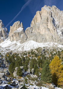The Dolomites of the Groeden Valley in South Tyrol, Italy by Danita Delimont