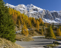 Groedner Joch mountain road, Italy by Danita Delimont