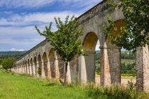 Vasari aqueduct, Arezzo, Tuscany, Italy by Danita Delimont