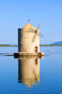 The Spanish Windmill on the lagoon of Orbetello, Orbetello, ... by Danita Delimont