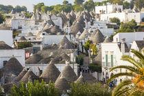 Trulli Houses, Alberobello, Apulia, Puglia, Italy von Danita Delimont