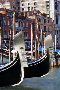 Gondolas on Grand Canal, Venice, Italy by Danita Delimont