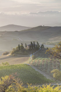 Val d'Orcia, Tuscany, Italy by Danita Delimont