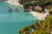 View of Zagare Bay and two sea stacks, Gargano Promontory, A... von Danita Delimont