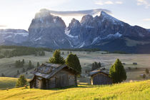 Mountain cabins, South Tyrol, Bolzano district, Alpe di Siusi, S von Danita Delimont