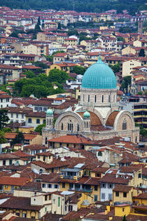 View From Above Tempio Maggiore Israelitico - Synagogue von Danita Delimont