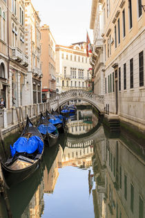 Gondola parking under Bridge by Danita Delimont