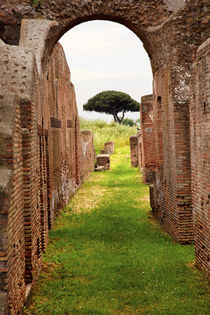 Ancient Roman Arch Walls Street Ostia Antica Rome Italy by Danita Delimont