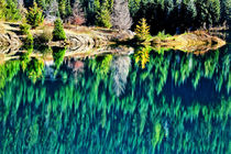 Green Trees Gold Lake Reflection Snoqualme Pass Washington von Danita Delimont