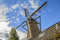 Netherlands, Holland, Utrecht, Wijk bij Duurstede, Cothen by Danita Delimont