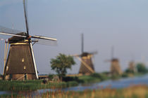 Netherlands, South Holland, Kinderdijk von Danita Delimont