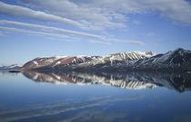 Arctic, Svalbard, Spitsbergen, Liefdefjord, scenic polar lan... von Danita Delimont