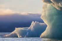 Norway, Svalbard, Kvitoya by Danita Delimont