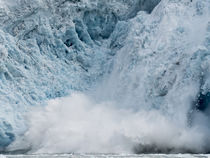 Arctic Ocean, Norway, Svalbard by Danita Delimont