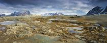Arctic, Svalbard, Hornsund von Danita Delimont