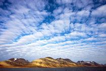 Arctic, Svalbard, Isfjorden by Danita Delimont