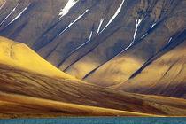 Arctic, Svalbard, Isfjorden von Danita Delimont
