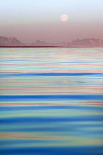 Arctic, Svalbard, Longsfjorden by Danita Delimont