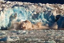 Arctic, Svalbard by Danita Delimont
