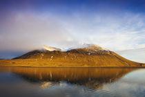 Arctic, Svalbard, Mushamna von Danita Delimont
