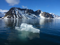Svalbard. Hornsund. Iceberg in clear water. by Danita Delimont