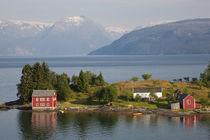 Hardangerfjorden nr Bergen, Western Fjords, Norway by Danita Delimont