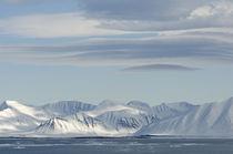 Norway, Svalbard Archipelago, Spitsbergen, Woodfjorden von Danita Delimont