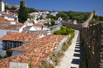 Europe, Portugal, Leiria, Obidos by Danita Delimont