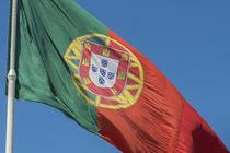 Portugal, Lisbon, Edward VII Park, largest Portuguese flag von Danita Delimont