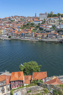 Europe, Portugal, Oporto, Douro River by Danita Delimont