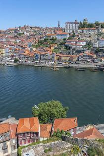 Europe, Portugal, Oporto, Douro River von Danita Delimont