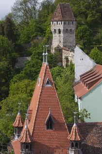 Romania, Transylvania, Sighisoara, Goldsmiths Tower von Danita Delimont