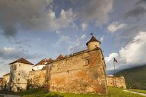 Romania, Transylvania, Brasov, Brasov Citadel, sunset by Danita Delimont