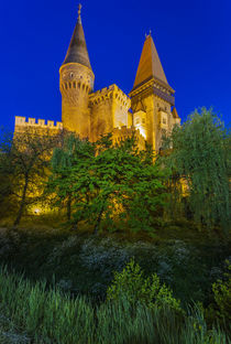 Romania, Transylvania, Hunedoara, Corvin Castle, dusk by Danita Delimont