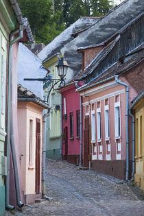 Romania, Transylvania, Sighisoara, Old Town building details von Danita Delimont