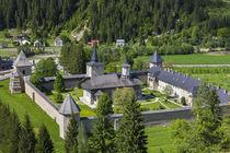 Romania, Bucovina Region, Bucovina Monasteries, Sucevita, Su... by Danita Delimont