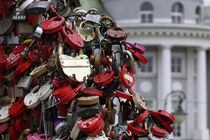 Love Trees & Locks by Danita Delimont