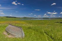 Russia, Pskovskaya Oblast, Pushkinskie Gory, landscape at Mi... von Danita Delimont